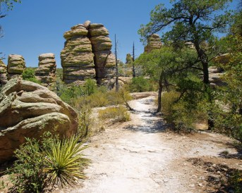 P5280758 - Explore the Geological and Cultural Diversity of Southeast Arizona
