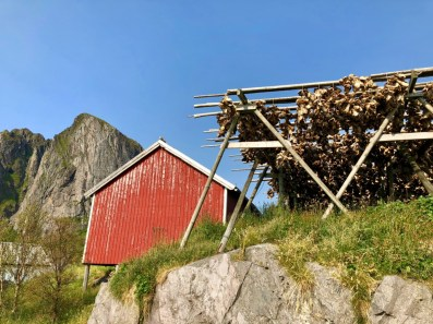 "IMG 3503 - Viking Cruises to Norway & the UK: An ""Into the Midnight Sun"" Travelogue"