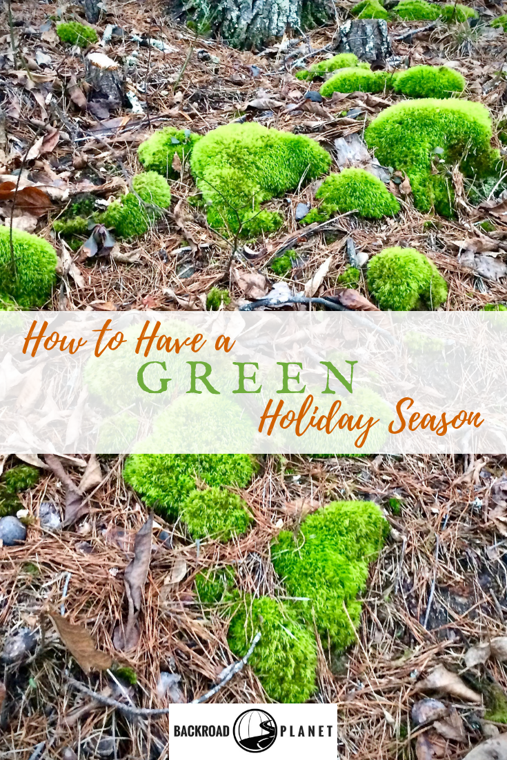 Learn eight ways to celebrate a green holiday season this year when you download The Nature Conservancy's free Holiday Green Guide! #natureconservancy #TBIN #greenholiday #greenholidayseason #nature #greenholidaytips #holidaytips