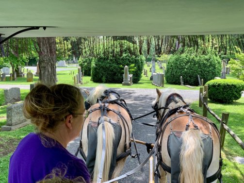 Lexington Carriage Ride - Scenic & Historic Things to Do in Lexington, Virginia