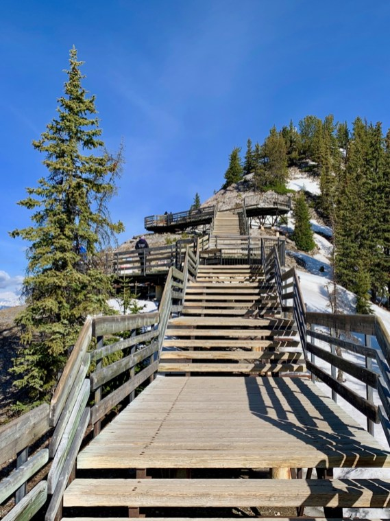 Sulphur Mountain Boardwalk Stairs - The Best Sites & Activities for a Town of Banff Adventure