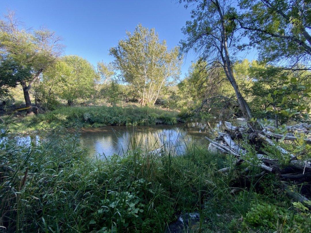 Wet Beaver Creek Montezuma Well - Things to Do on a Drive from Phoenix to Flagstaff, Arizona