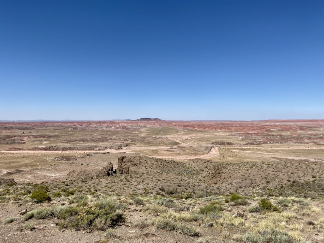 Pintado Point - Drive the Painted Desert & Petrified Forest National Park