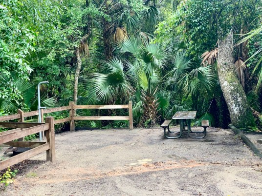 Lake Griffin SP campsite - Discover Lake County Florida Outdoor Adventures