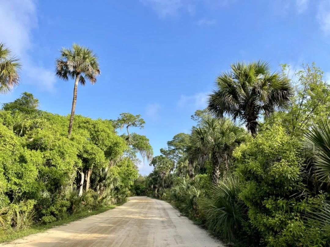 Tomoka State Park dirt road - Florida's Tomoka State Park Camping, Recreation & History