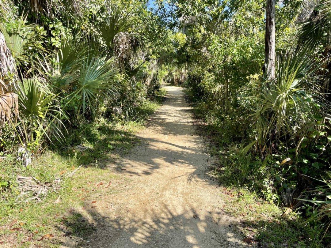 Tomoka State Park trail - Florida's Tomoka State Park Camping, Recreation & History