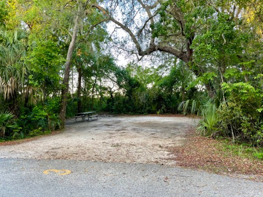 Blue Spring State Park dirt campsite  - Discover Florida's Blue Spring State Park & Campground