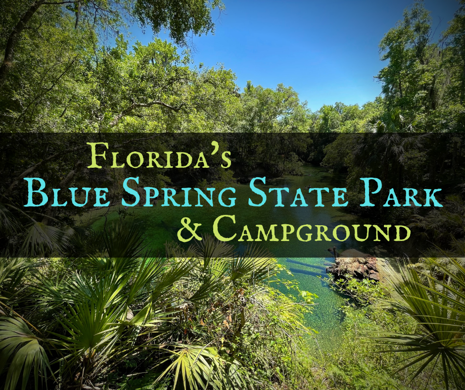Blue Spring State Park featured - Backroad Travel Destinations