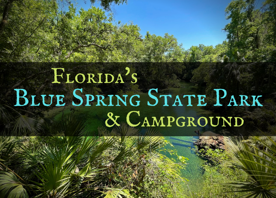 Discover Florida's Blue Spring State Park & Campground