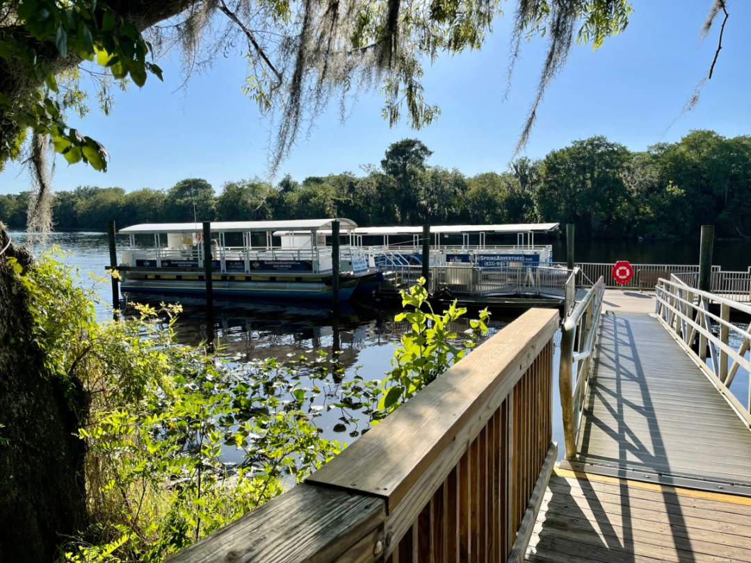 St. Johns river tours - Discover Florida's Blue Spring State Park & Campground