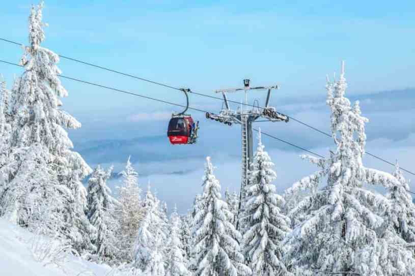 The Best Winter Vacation - Skiing!