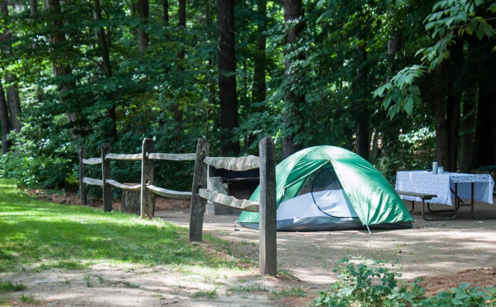 A green tent next to a picnic table at Wilgus State Park in Vermont