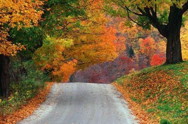 Autumn on the back roads in Woodstock, Vermont / photo credit: Betsy Luce