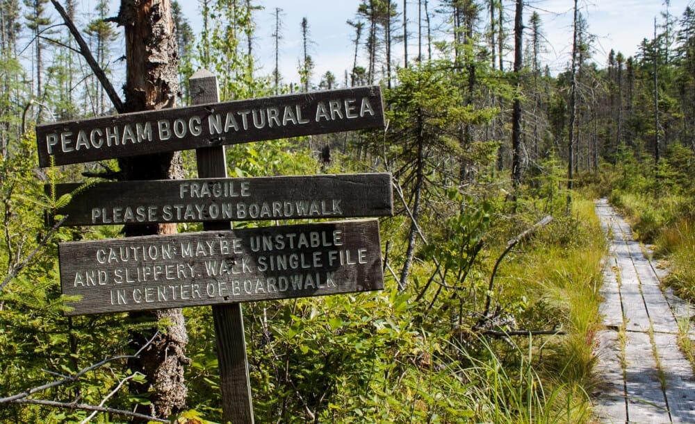 A Secret Vermont Treasure: Groton State Forest