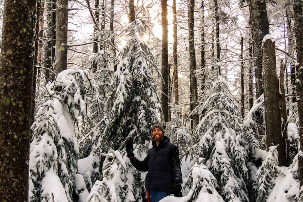 A man poses next to a stand of Christmas trees in a snowy forest