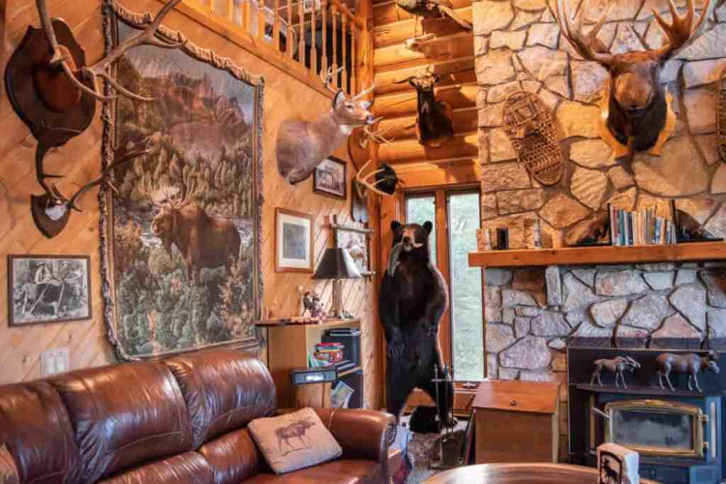 An Adirondack-style living room in Moose Meadow Lodge - complete with stuffed critters and snowshoes on the walls.