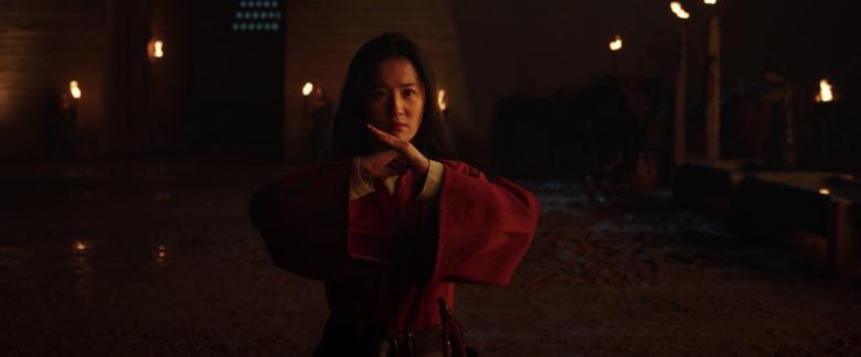 Mulan warns her allies about the present danger.