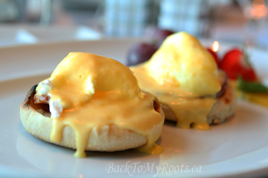 Hollandaise Sauce - www.BackToMyRoots.ca