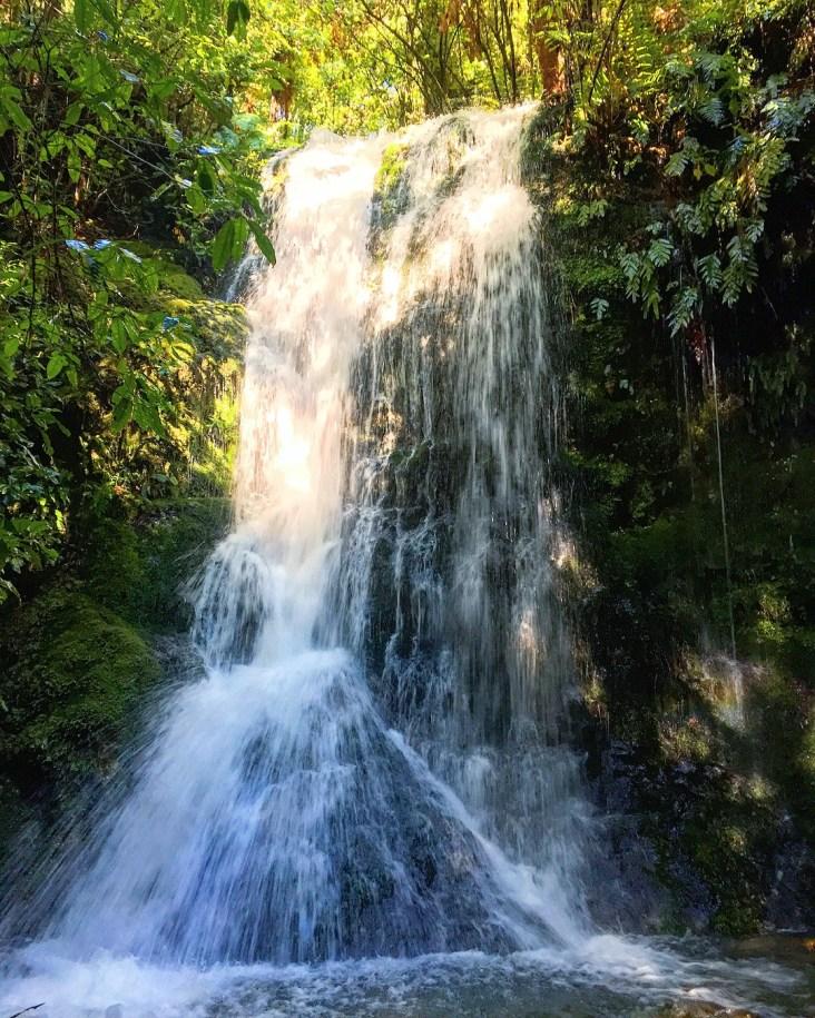 Pelorus River Waterfall