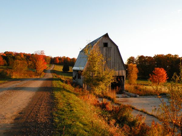 vermont-cheese-road-trip-1_22091_600x450