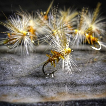 Yallar Hammer Dry Fly