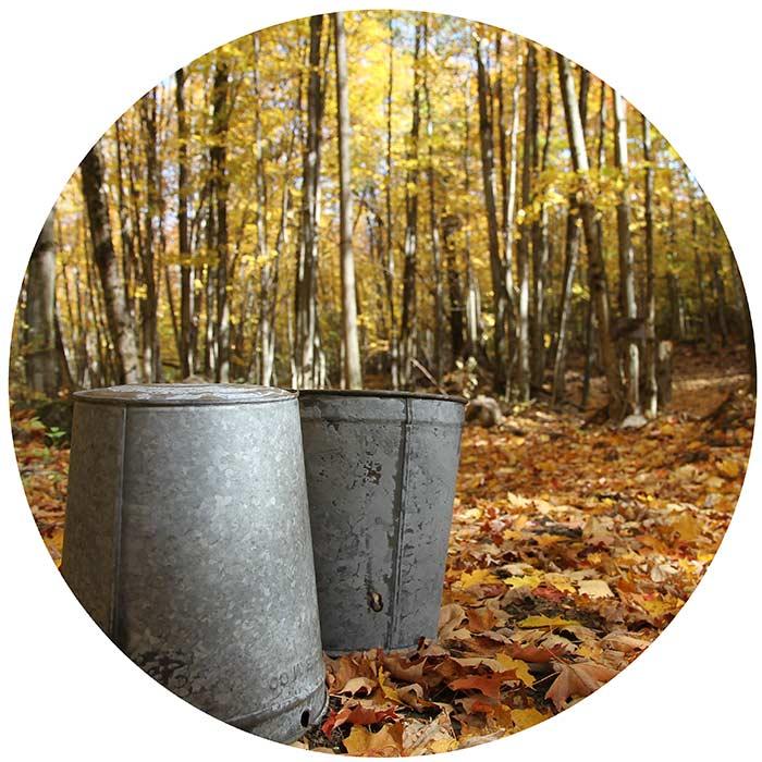 tap buckets