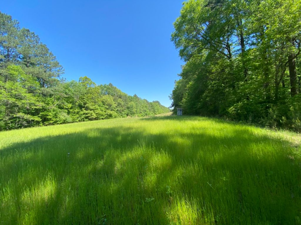 land for sale franklin county ms