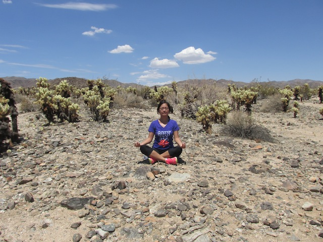 23 - joshua-tree-national-park