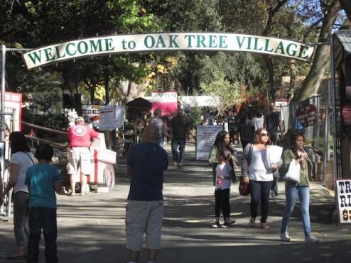 1 - oak_tree_village_oak_glen_california