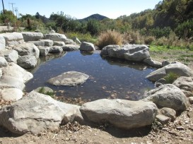 13 - wildlands_conservancy_oak_glen_california