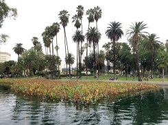7 - echo_park_los_angeles_california