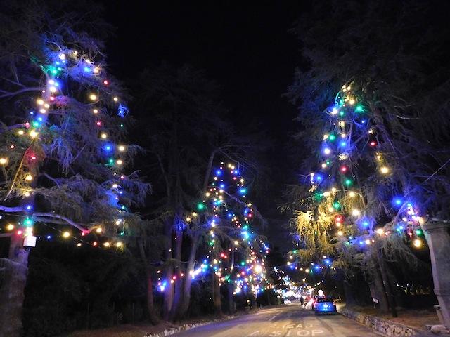 1 - christmas_tree_lane_altadena_holiday_lights_los_angeles
