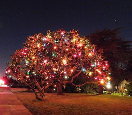 2 - christmas_tree_lane_san_marino_holiday_lights_los_angeles