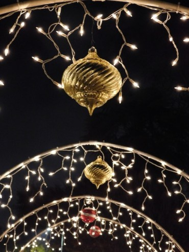 2 - yolanda_lights_reseda_los_angeles_christmas_lights