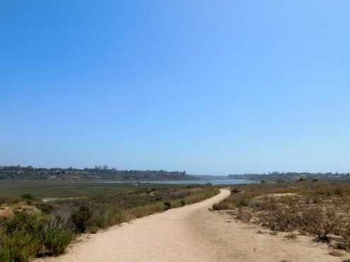 upper_newport_bay_nature_preserve_orange_county8