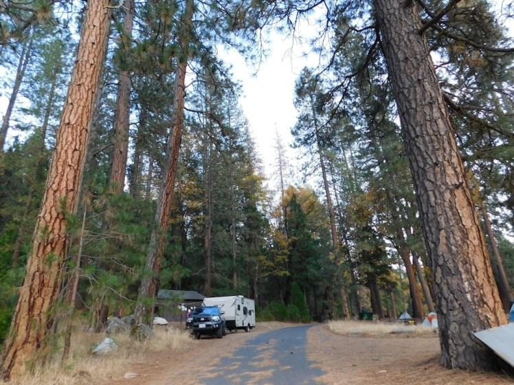 1-wawona-campground-yosemite