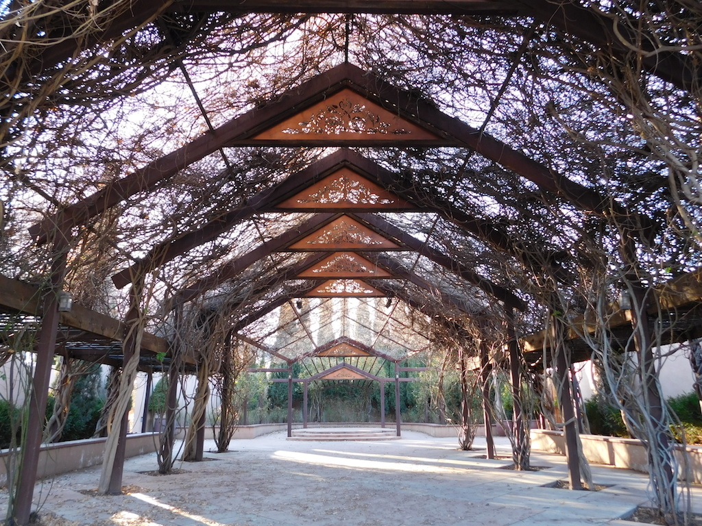 when in albuquerque, this botanic garden is a must-see - backyard