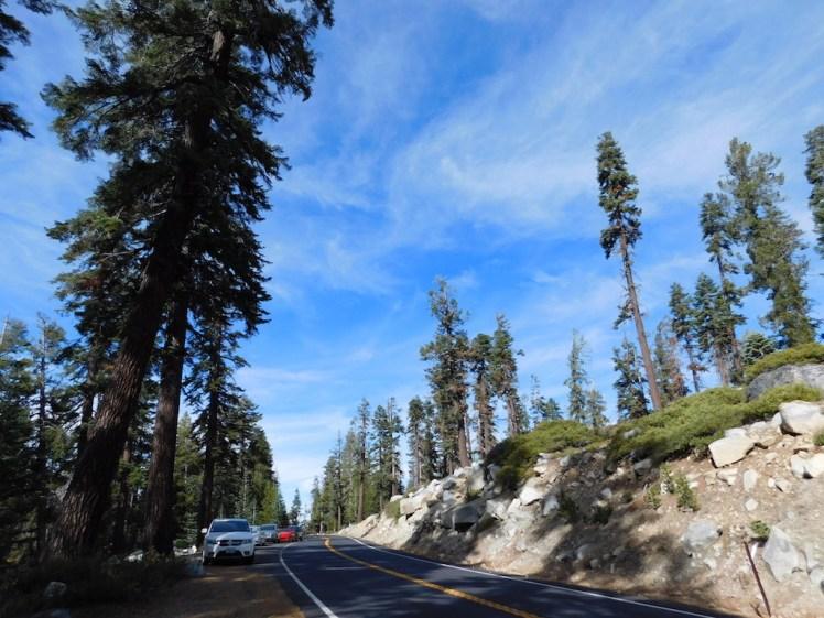 Tioga Pass Yosemite National Park