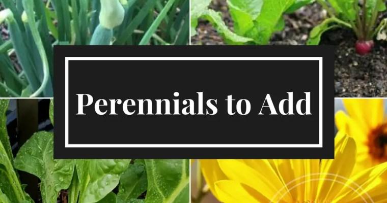 Grow Perennials