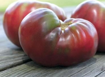 Cherokee Purple Tomato, Backyard Eden, www.backyard-eden.com