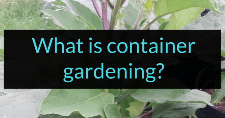 What is Container Gardening