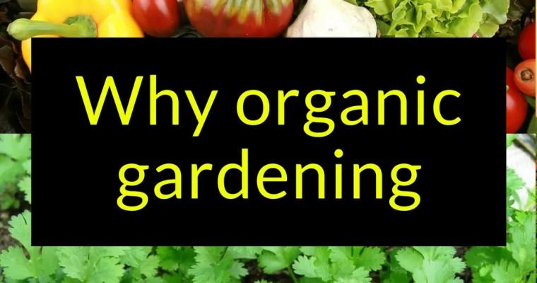 Why organic gardening?