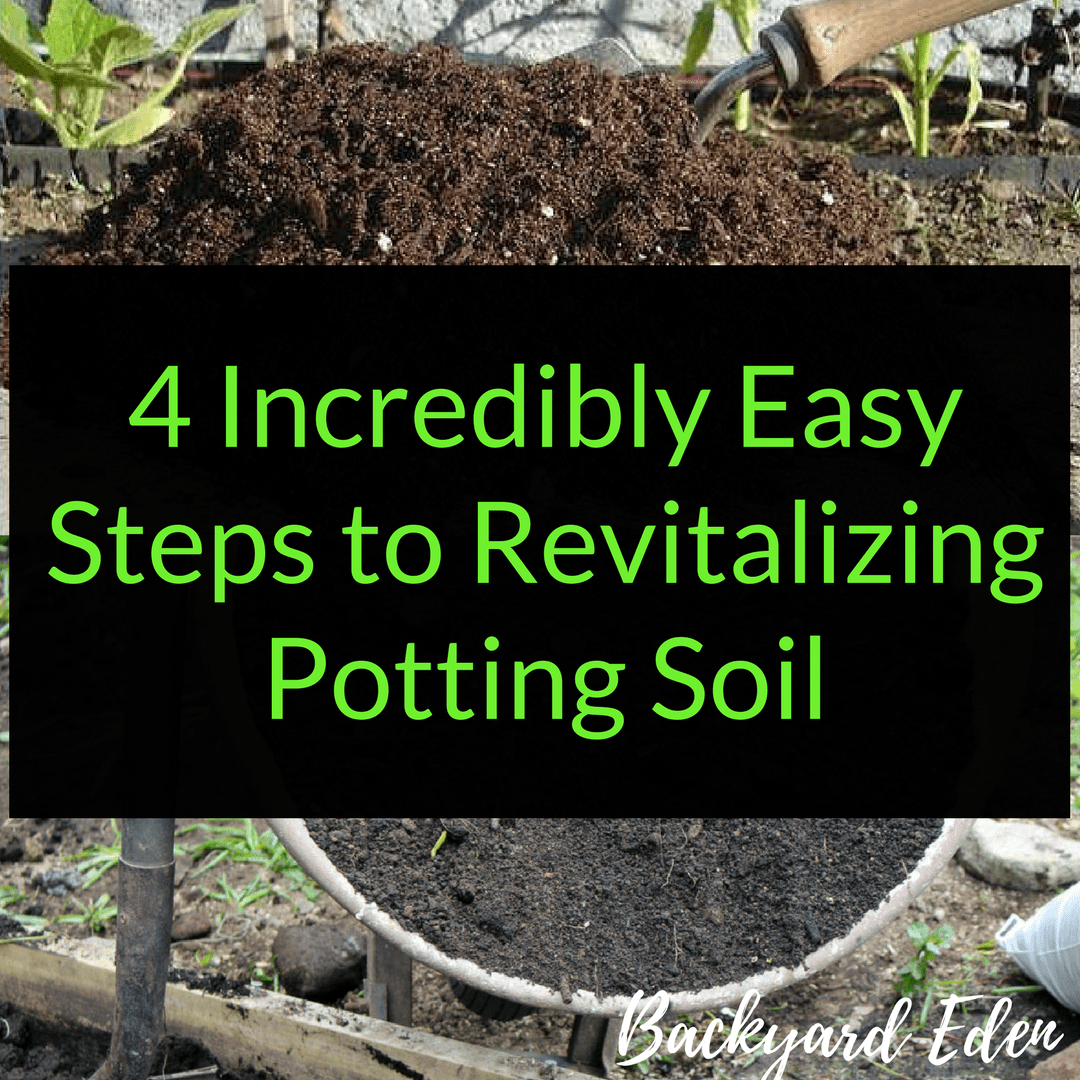 Revitalizing Potting Soil: 4 Incredibly Easy Steps to reuse soil