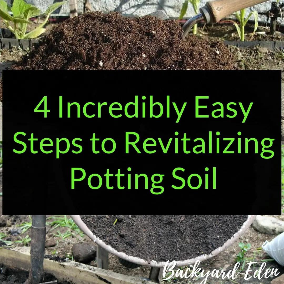 Revitalizing Potting Soil: 4 Incredibly Easy Steps to reuse soil