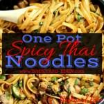 One Pot Spicy Thai Noodles, spicy thai noodles recipe, one pot meals, thai noodles, Backyard Eden, www.backyard-eden.com, www.backyard-eden.com/one-pot-spicy-thai-noodles