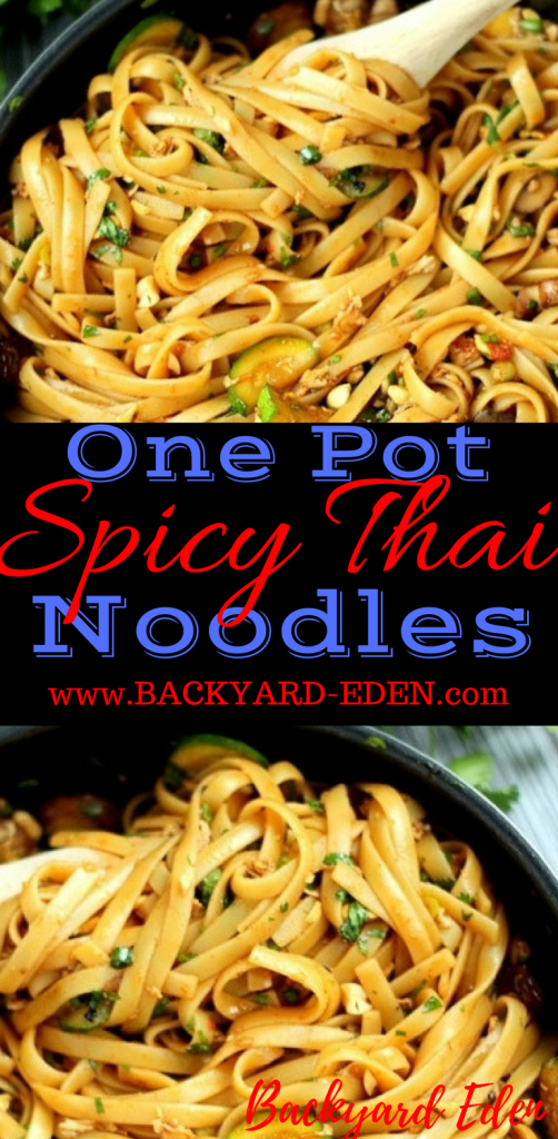 One Pot Spicy Thai Noodles, spicy thai noodles recipe, one pot meals, thai noodles, Backyard Eden, www.backyard-eden.com, www.backyard-eden.com/one-pot-spicy-thai-noodles