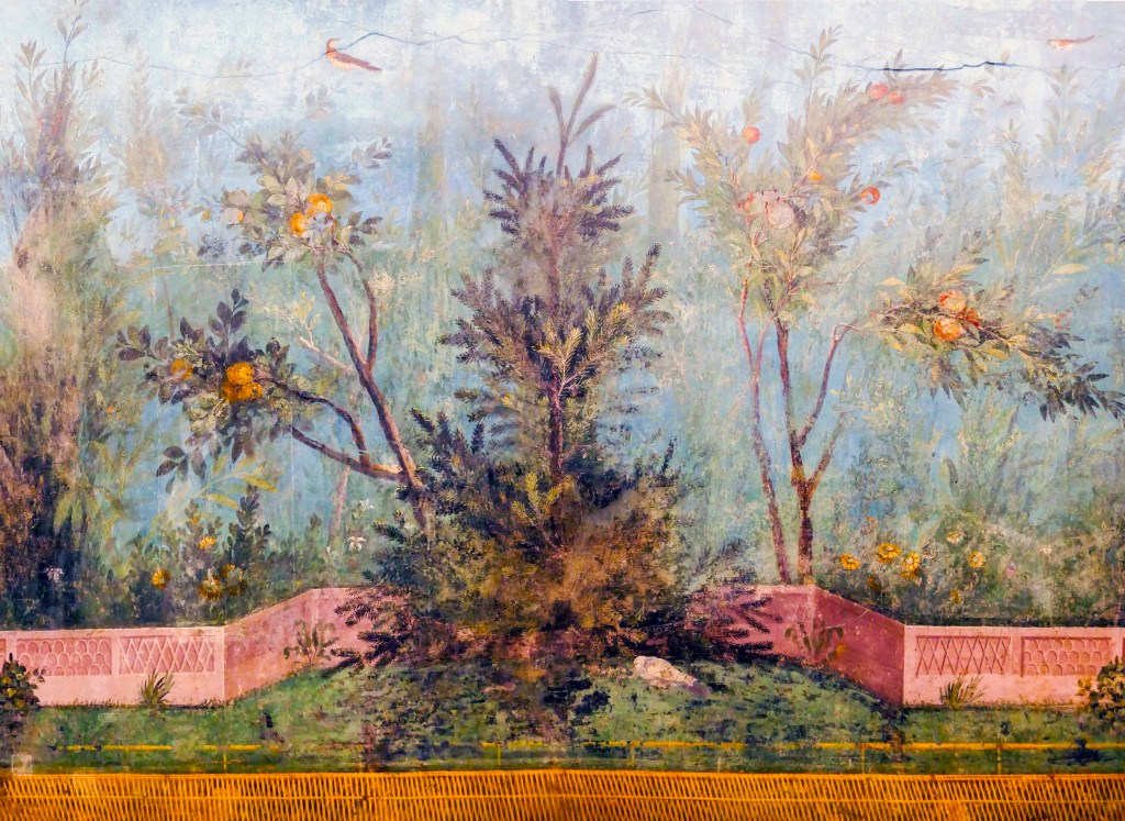 Livia's garden fresco. Detail of Norway spruce (Picea abies).