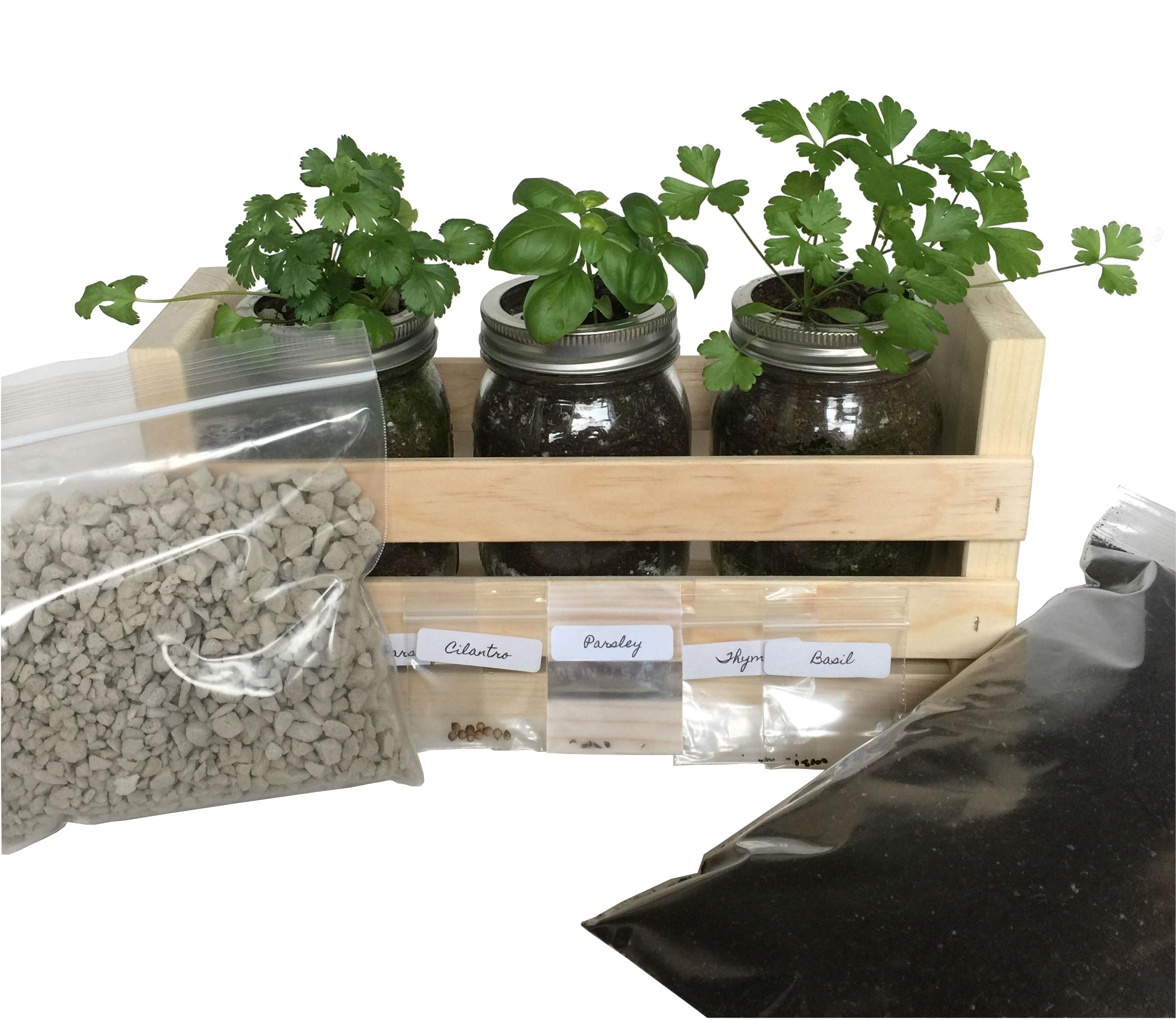 Window Sill Herb Garden Kit