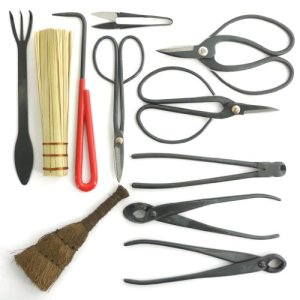 BambooMN Bonsai Tool 11pc Advanced Care Set