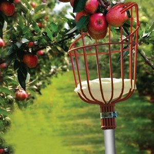 Ohuhu Fruit Picker Tool, 13-Foot Fruit Picker with Light-Weight